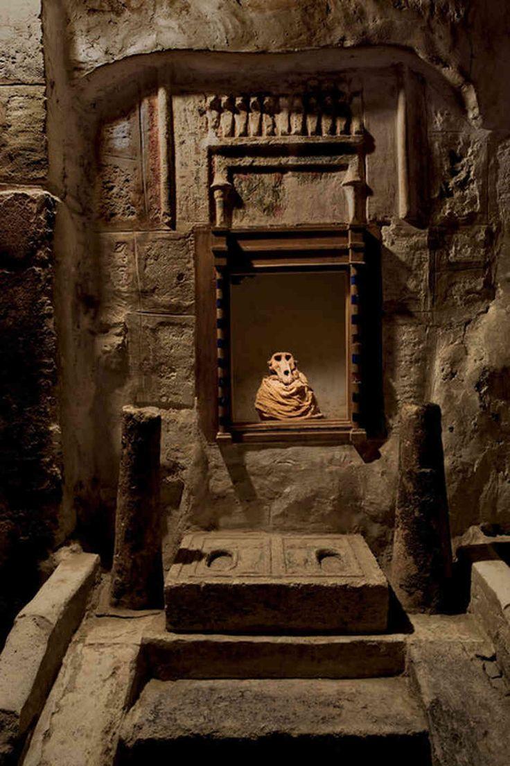Tuna el-Gebel animal catacomb.  NPR article about animal mummies.