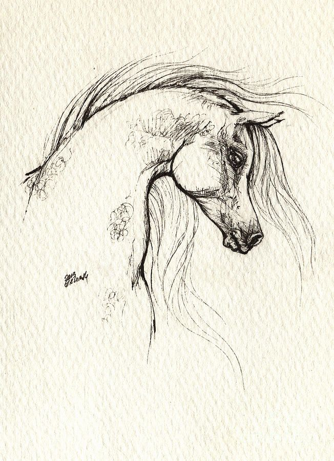 Drawing - Arabian Horse Drawing by Angel  Tarantella
