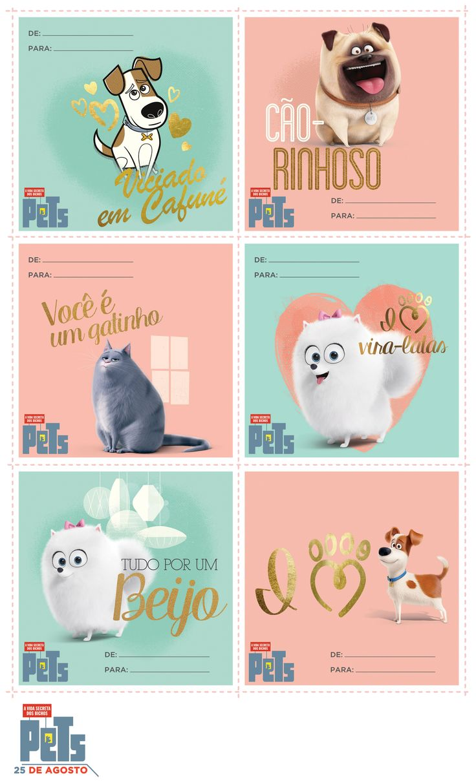 Mejores 74 imágenes de PETS en Pinterest   La vida secreta de las ...