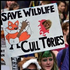 Mass protest in London calls for UK Government to uphold ban on fox hunting