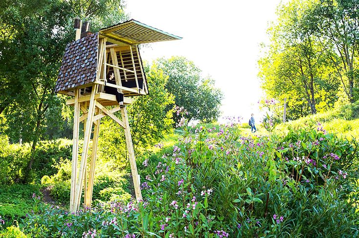 Adorable Wild Thing Cabin Is Perched In The Middle Of A
