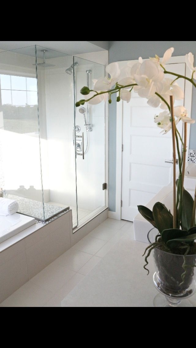 Luxurious glass shower with bench.