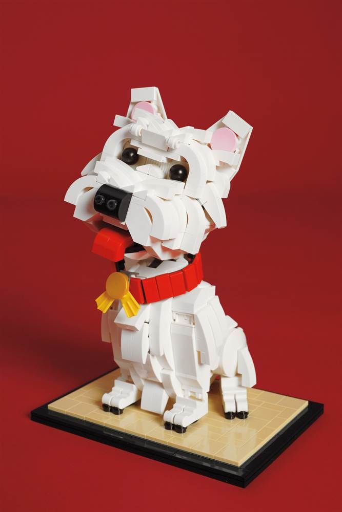 This looks just like my lil dog named Lego. Except for the color :) Some of the Most Extraordinary Lego Builds Ever!