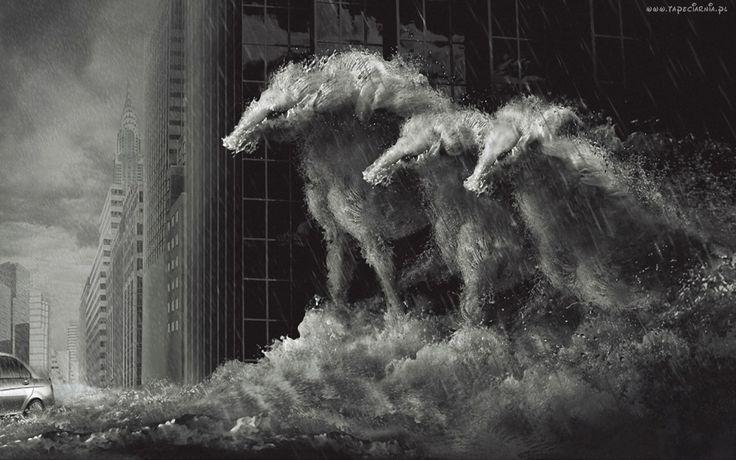 Konie, Deszcz, Fala, Budynki