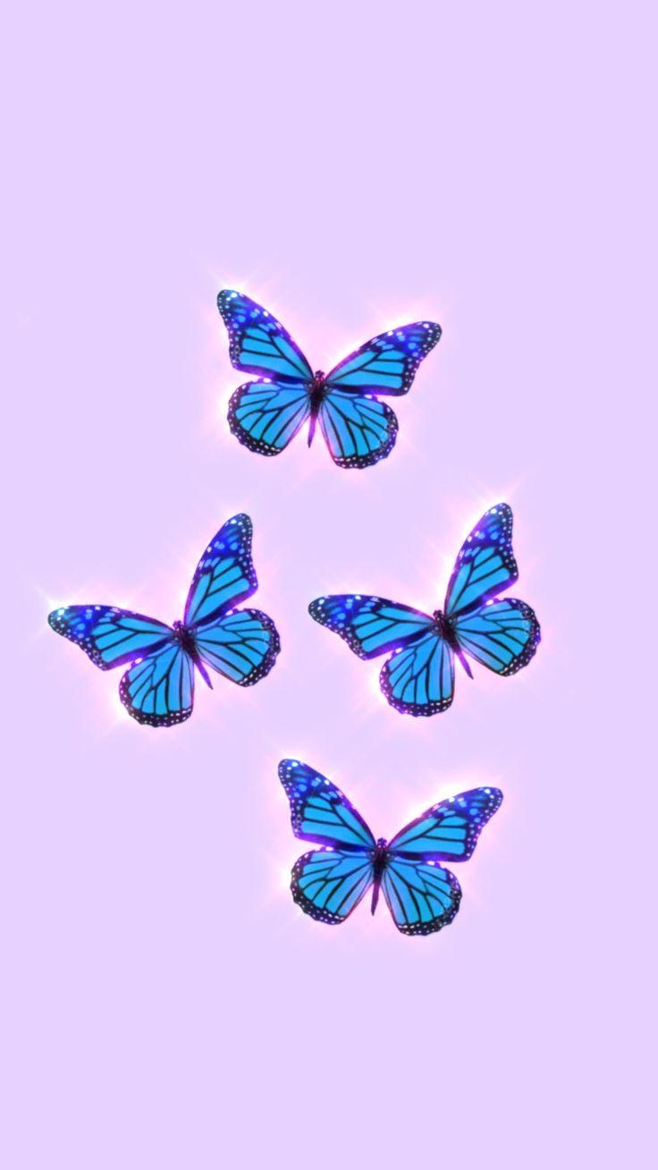 Butterfly aesthetic wallpaper in 2020 | Cute patterns ...