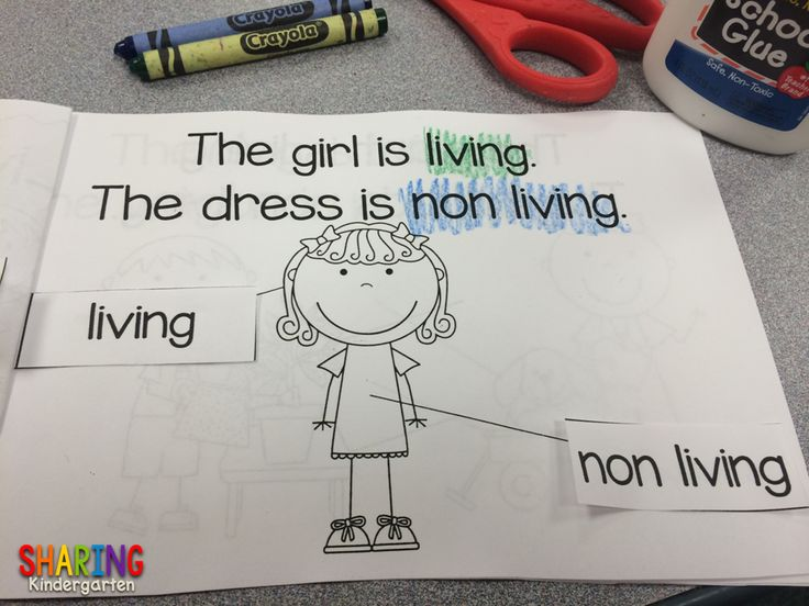 huge hit for kinders... living and non living book!