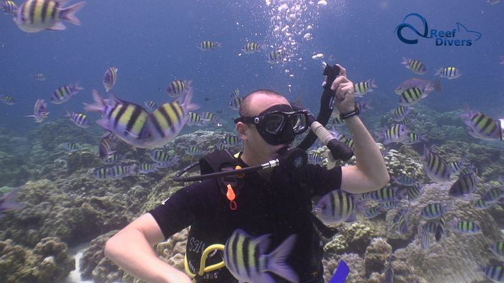 My First Scuba Diving Experience