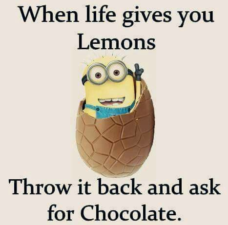 Yay for chocolate! Unless life throws lemon bars and then it is yay for lemon…