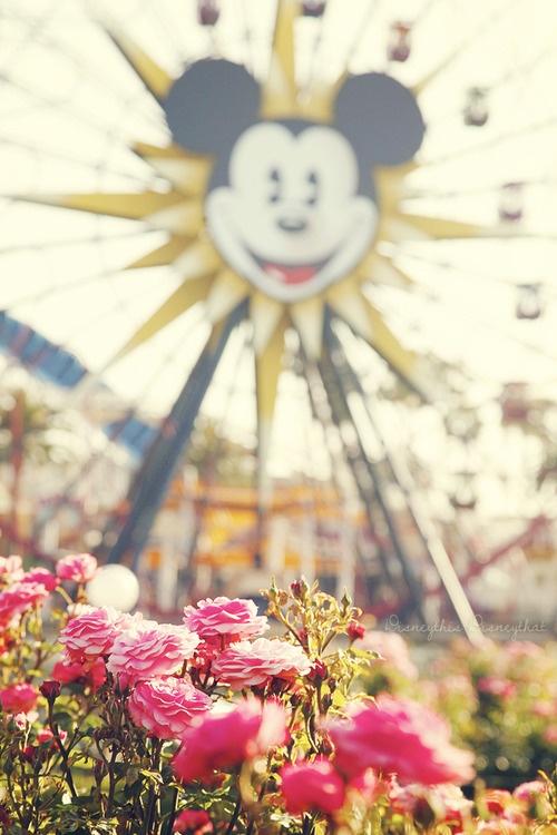 DisneyThis. DisneyThat. Flowers at Disneyland #FlowerShop