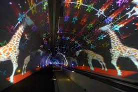 Afbeeldingsresultaat voor tunnel de la croix rousse lyontunnel de la croix rousse lyon