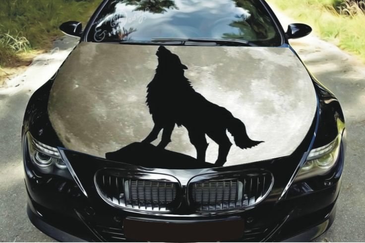 Graphics For Wolf Car Hood Graphics Wwwgraphicsbuzzcom - Custom vinyl decals for car hoods