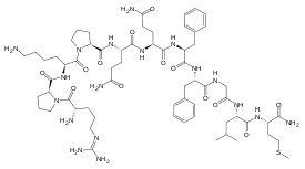 Substance P.svg