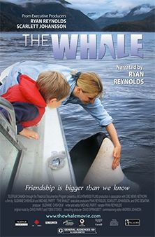 The Whale | Beamafilm | Stream Documentaries and Movies |
