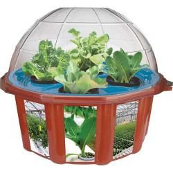 Shop for Hydro-Dome Plant Kit. Free Shipping on orders over $45 at Overstock.com - Your Online Toys