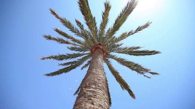 Resmålsfilm från Sunwing Cala Bona på Mallorca.