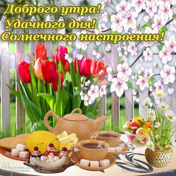 Открытки с добрым утром и хорошим настроением женщине весенние