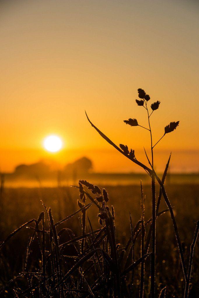 Sunrise farm  autumn