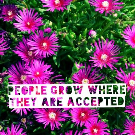 People grow where they are accepted