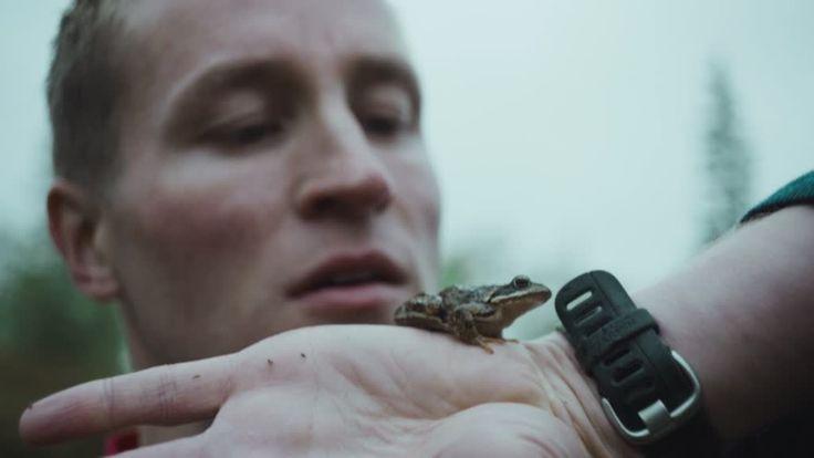 | Berlinale | Programm | Programm - Mot Naturen | Out of Nature