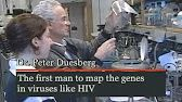 (4) The Origin of HIV Aids - The best documentary - Channel 4 - YouTube
