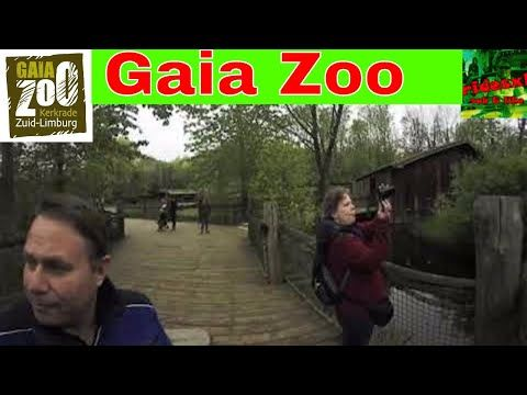 Rondgang door Gaia Zoo In Kerkrade - Youtube