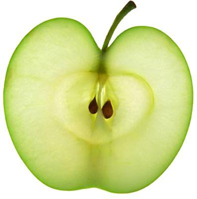 Gallery For > Apple Fruit Slice Mood board Pinterest
