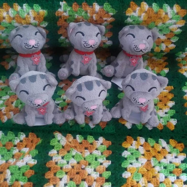 6 Gray Plush Tabbies / Kittens officially Licensed Big Bang Theory Merchandise