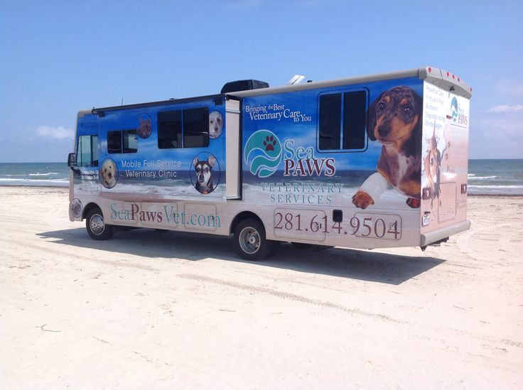 Mobile Veterinary Clinic. Stay home, relax and keep your