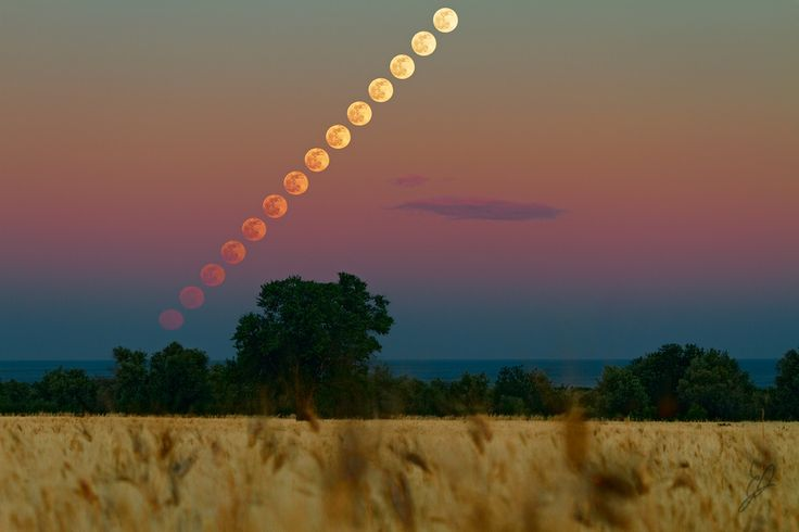 Moon Rising Above a Wheat Field