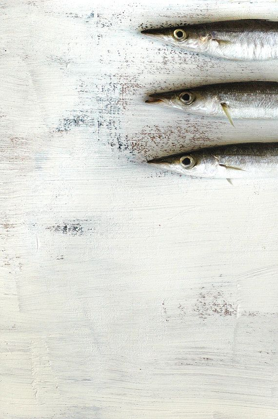 Three Sardins. Food Photography, Kitchen Decor, Fine Art Print, Still Life, Gift, Wall Art.