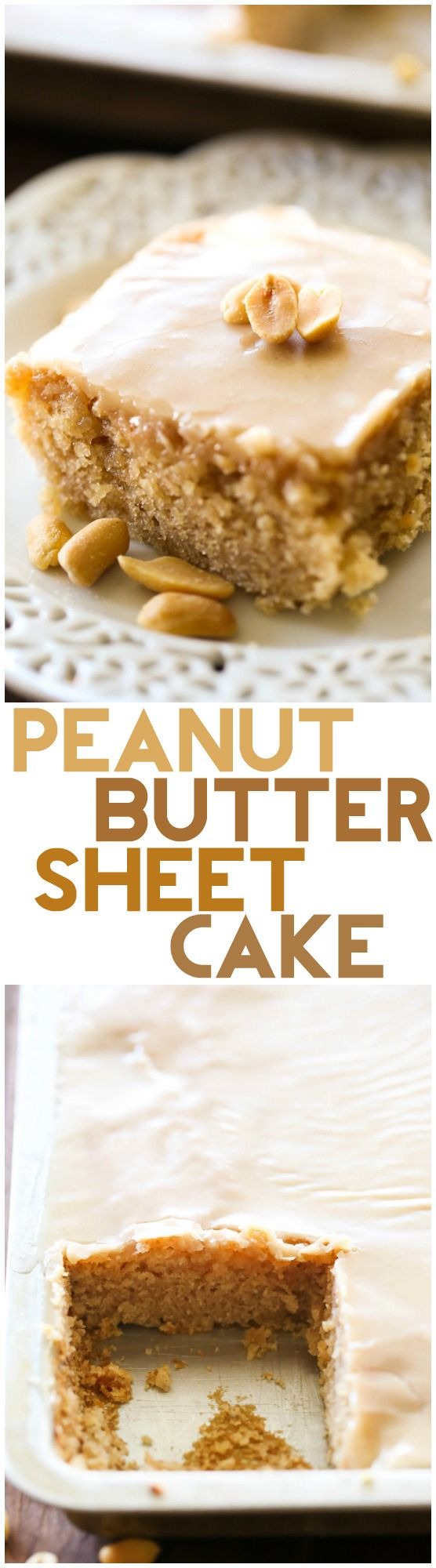 Peanut Butter Sheet Cake... If you love peanut butter, then you absolutely need to try this MELT-IN-YOUR-MOUTH Peanut Butter Sheet Cake. It is truly amazing!
