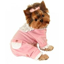 Designer Dog Clothes a girl needs pajamas too