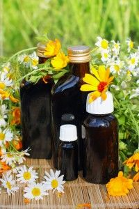 SilverOwl Herbal Remedies - Silverowl offers various tinctures for your health. Please email for a consultation for combinations or specific remedies.