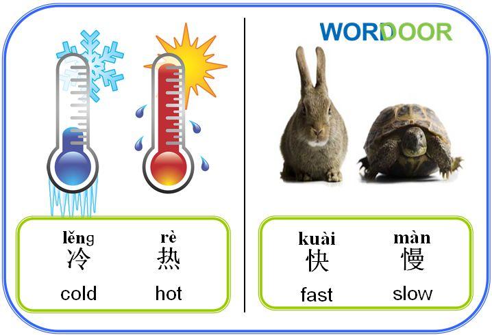 Wordoor Chinese - Antonyms # hot vs cold; fast vs slow
