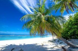 Perché il periodo tra novembre ed aprile è considerato il migliore per una vacanza alle Maldive... Scoprite il nostro blog benessere! #benessere #maldive #spiaggia #relax #lusso #tropicale #sole #vacanza