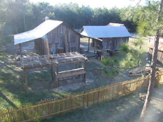 HELP WITH FARM CHORES at Florida Agricultural Museum
