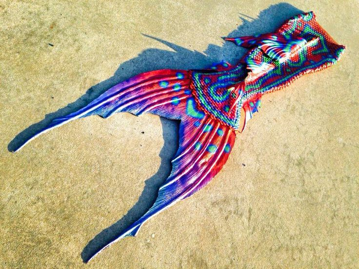 17 best images about beautiful mythical creatures on for Fish tail fin