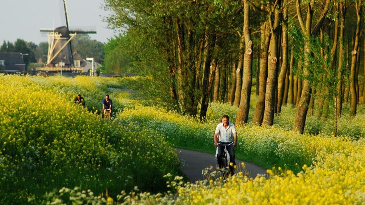 Amsterdam to Bruges Bike & Barge Holiday | Cycling Amsterdam to Bruges tours & vacations