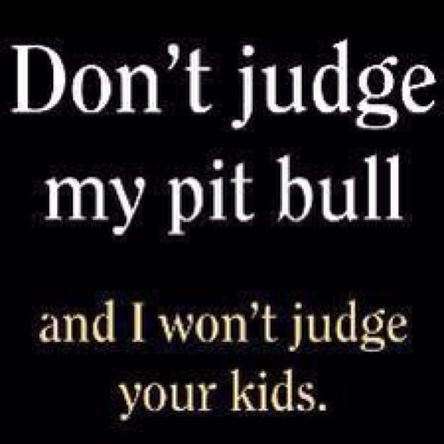 Don't judge a dog by it's breed!: Dogs, T Shirt, Judges, Don'T Judge, Animal, Pittie