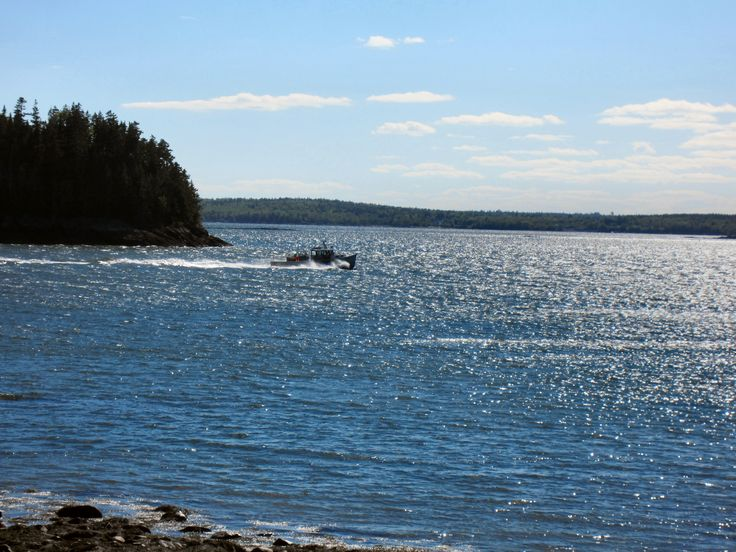 Maine Road Trip to Washington County & the Downeast Coast - The Wilderness Wife - http://www.wildernesswife.com/maine-road-trip-todowneast-coast/  #maine #coast #lobster