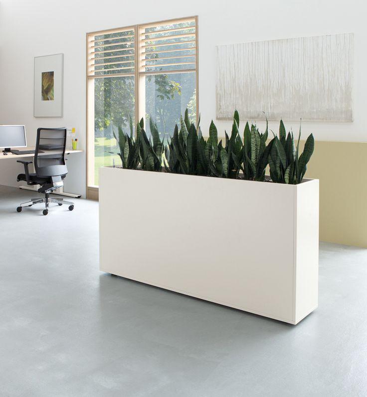 Bloembakken te gebruiken als afscheiding verrijdbaar in verschillende maten verkrijgbaar www - Moderne kantoorbureaus ...