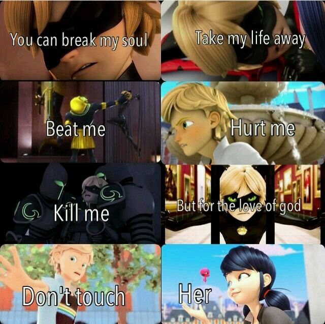 What I love about Cat Noir is he'll do anything for Ladybug OMG if he were real I so would