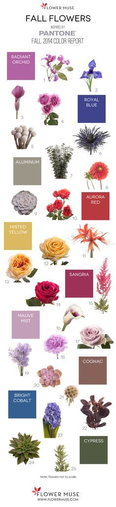 We share our picks of fall flowers as inspired by Pantone's 2014 Fall Color Report. Get ideas for your wedding or event with this Fall inspiration!