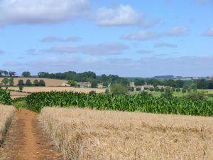 Classic Cotswolds Walking Tour: Naunton to Winchcombe