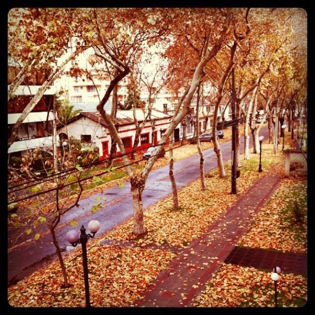 Santiago. Chile. Autumn.