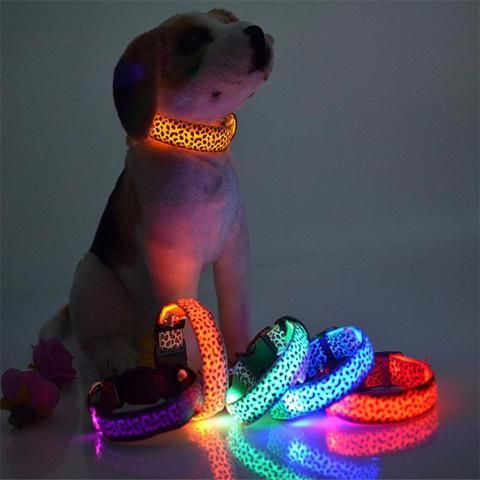 Adjustable Dog Collar With LED Light - Leopard Style - Big Star Trading - 1