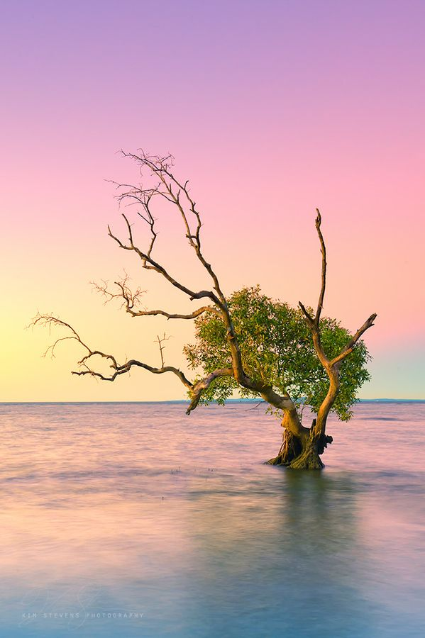 Solitude in Splendour - Nudgee Beach - Queensland - Australia