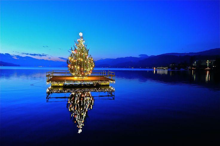 "Illuminated Christmas tree for the ""Quiet Advent"" on the Johannes-Brahms-Promenade, western bay in Pörtschach am Wörthersee, district Klagenfurt Land, Carinthia, Austria"