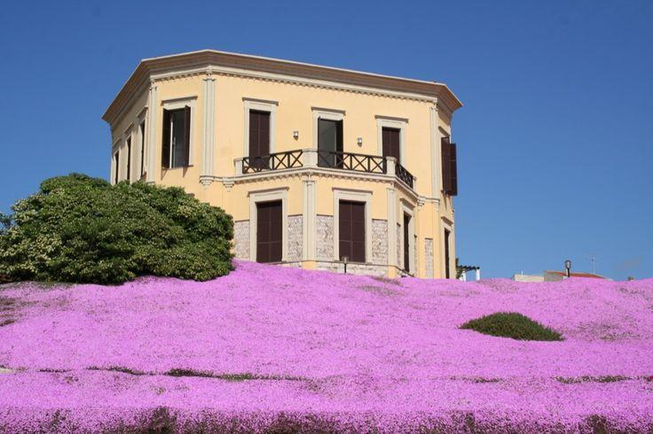 Sardegna da ammirare, colori ad Alghero www.sardegnapleinair.it