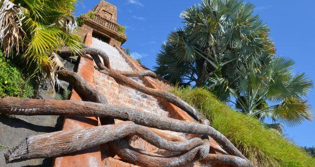 Top 10 Mind Blowing Experiences at the Walt Disney World Resorts – DisneyDining